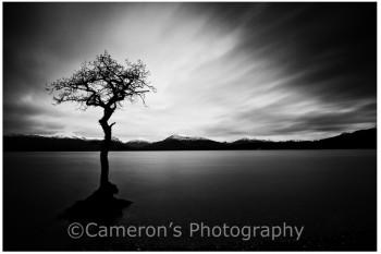 1698 Milarrochy Bay Loch Lomond