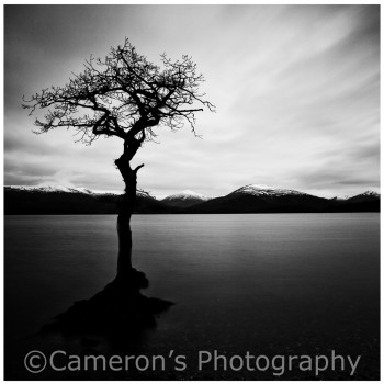 1698A Milarrochy Bay Loch Lomond